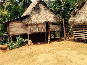 An Embera Home