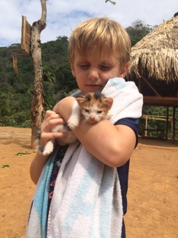 Eli found a kitty
